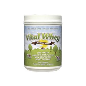 Chocolate Vital Whey Protein