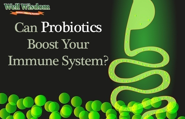 Can Probiotics Boost Your Immune System