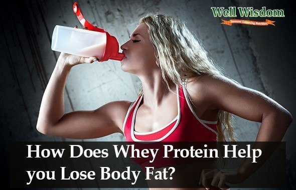How Does Whey Protein Burn Fat