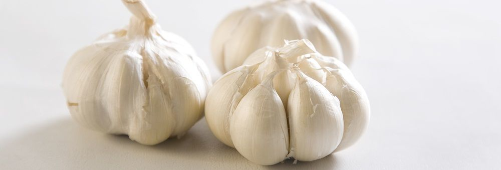 garlic helps you boost your immune system