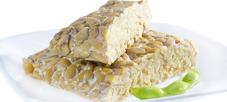 tempeh is one of good probiotics for immune system