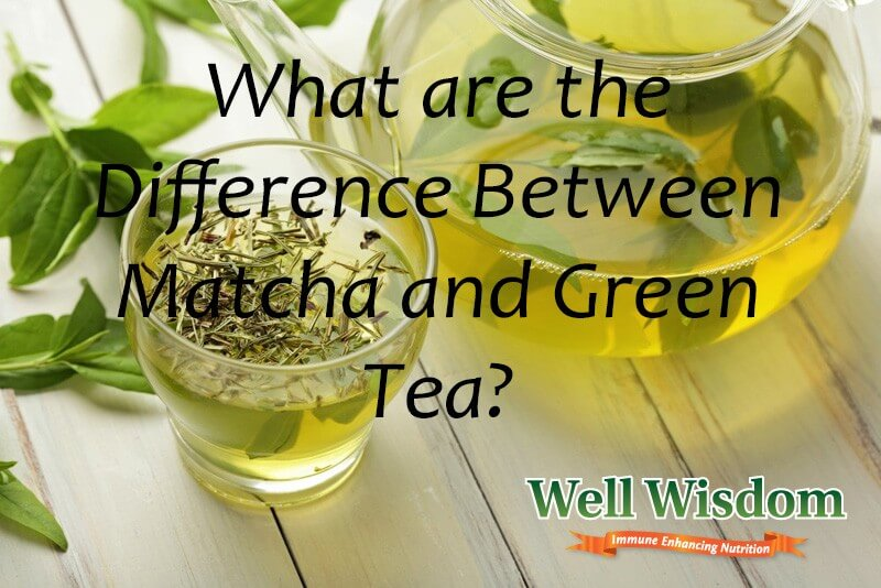 What are the Difference Between Matcha and Green Tea?