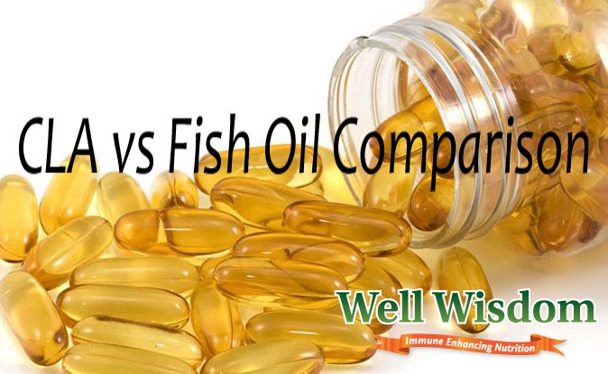 CLA vs Fish Oil