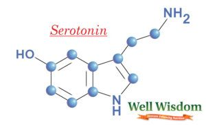 Natural Serotonin Boosters