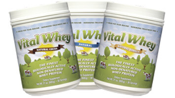 Whey Protein Concentrate Side Effects