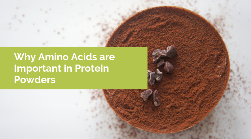 Why Amino Acids are Important in Protein Powders